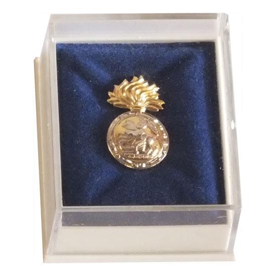 RNF Lapel Badge